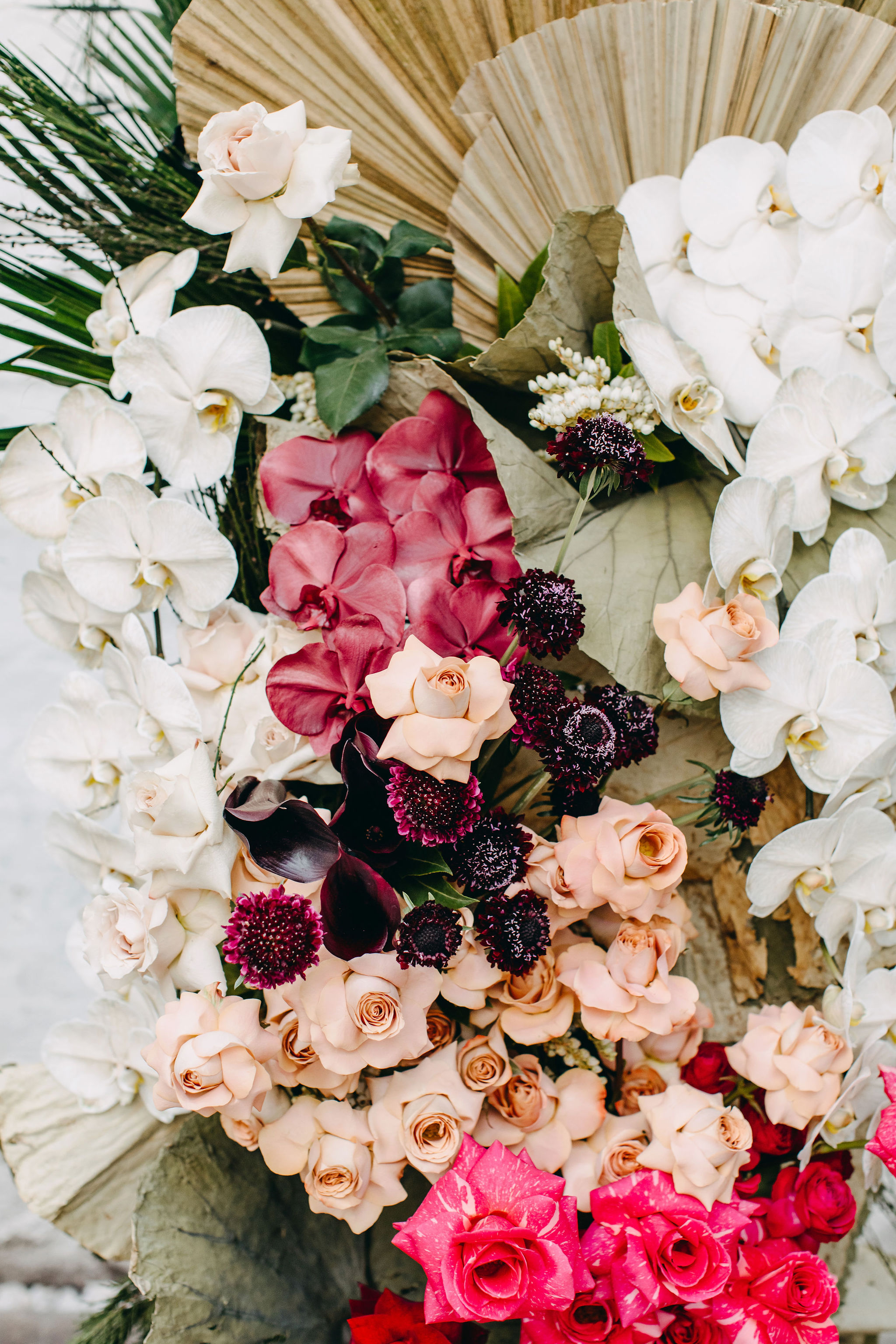 19-FOX&RABBIT-WEDDING-STATEBUILDINGS-26OCT2019